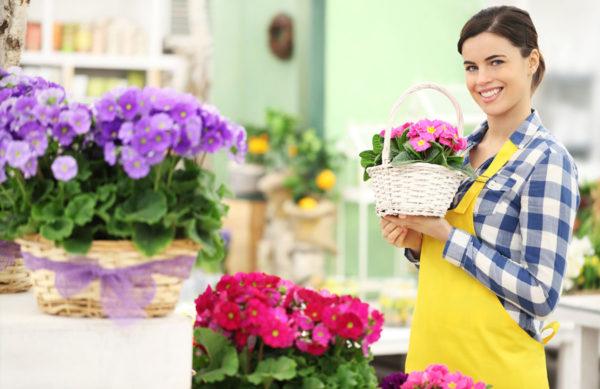 Floristik & Schnittblumen Sortiment